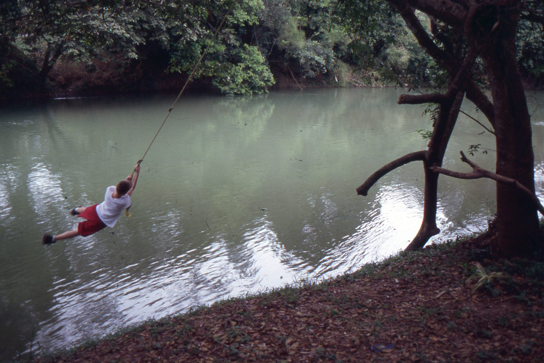 A rope swing on the Mopan River at Parrot Nest lodge tempts Evan Gabriel into a daredevil leap.