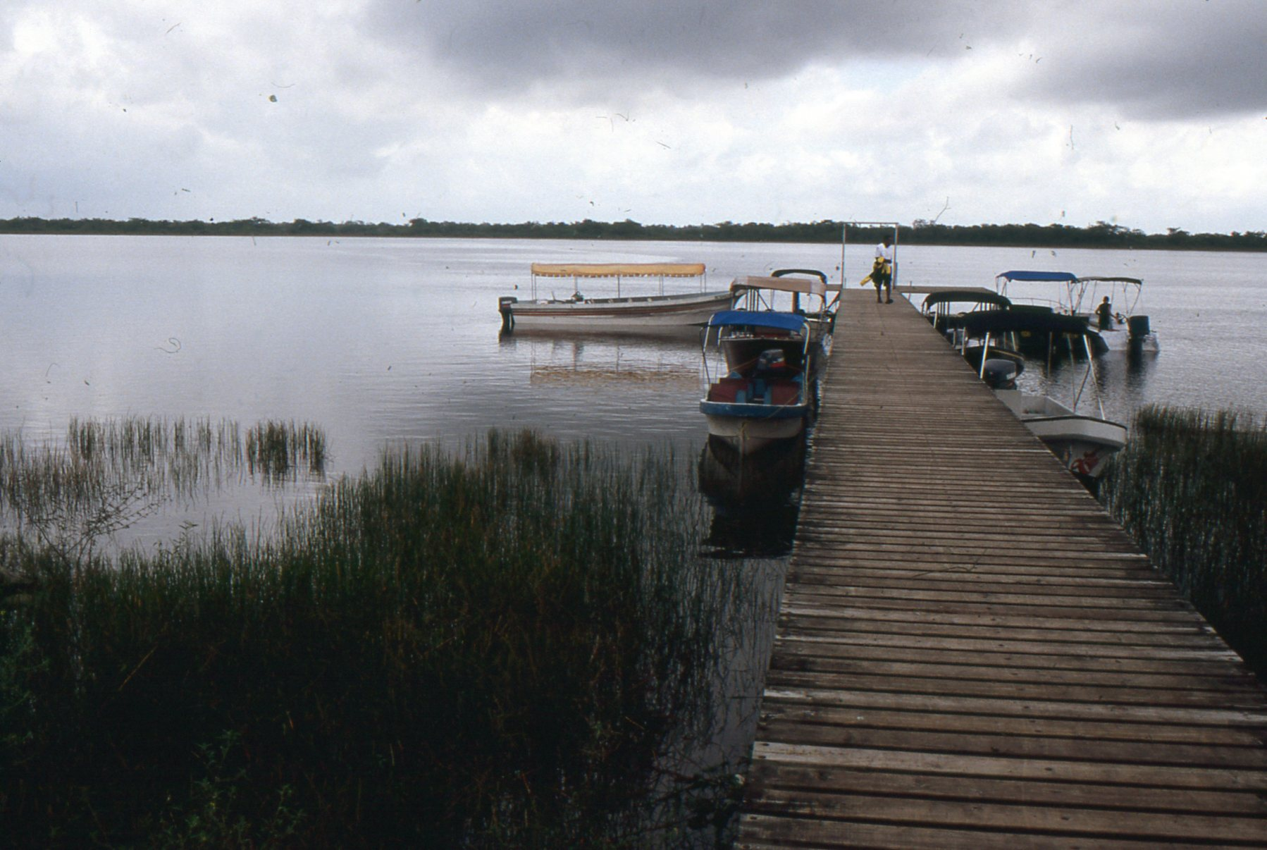 By the time you reach the boat dock at Lamanai, the river has spread out into a lagoon and the Mayan past seems to have taken over completely.