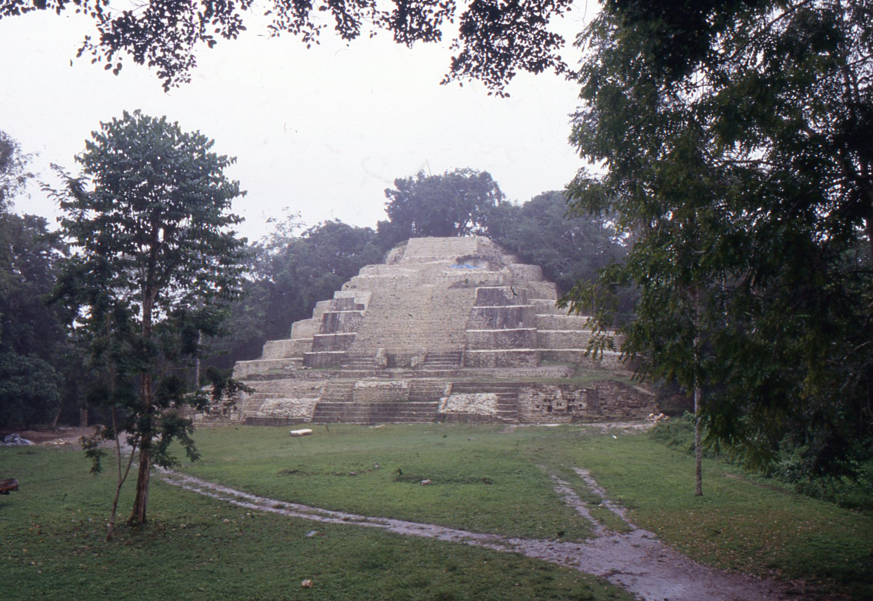 The mighty Jaguar Temple rises proudly from its jungle surroundings at Lamanai.