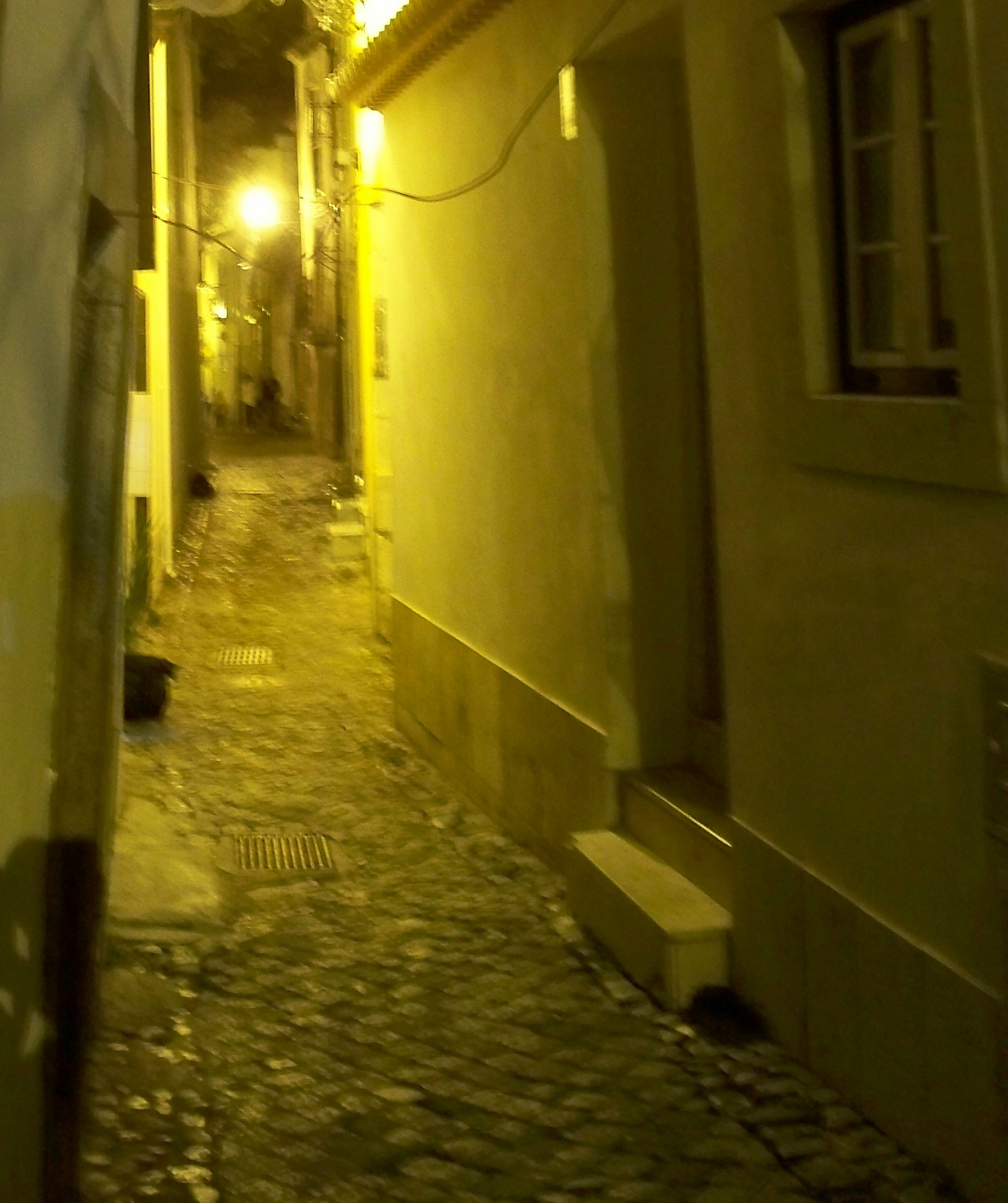 Saturday night in the Alfama . . . who knows which way magic lies?