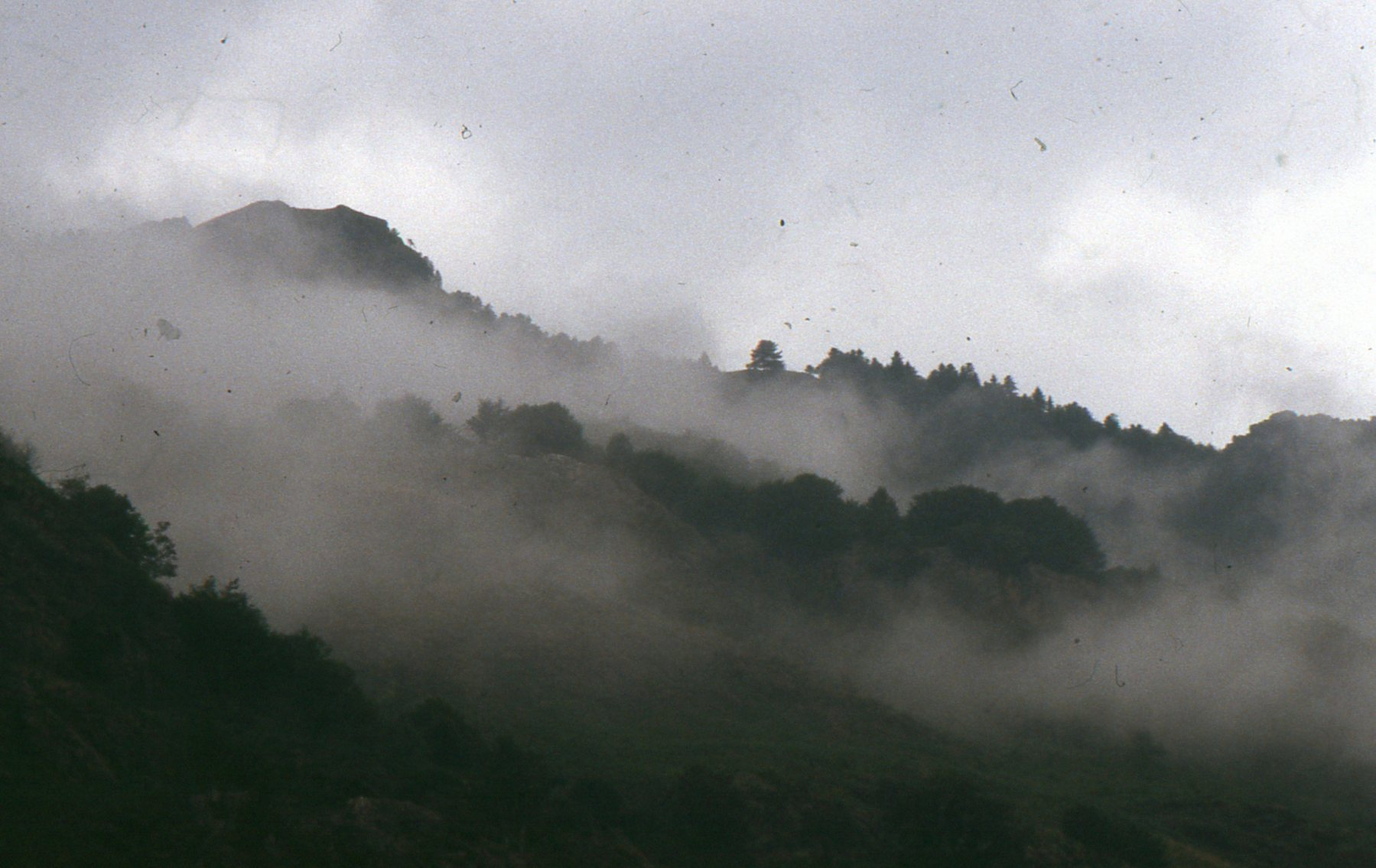 Fog tendrils swirl around a misty mountaintop in Spain's Aran Valley.
