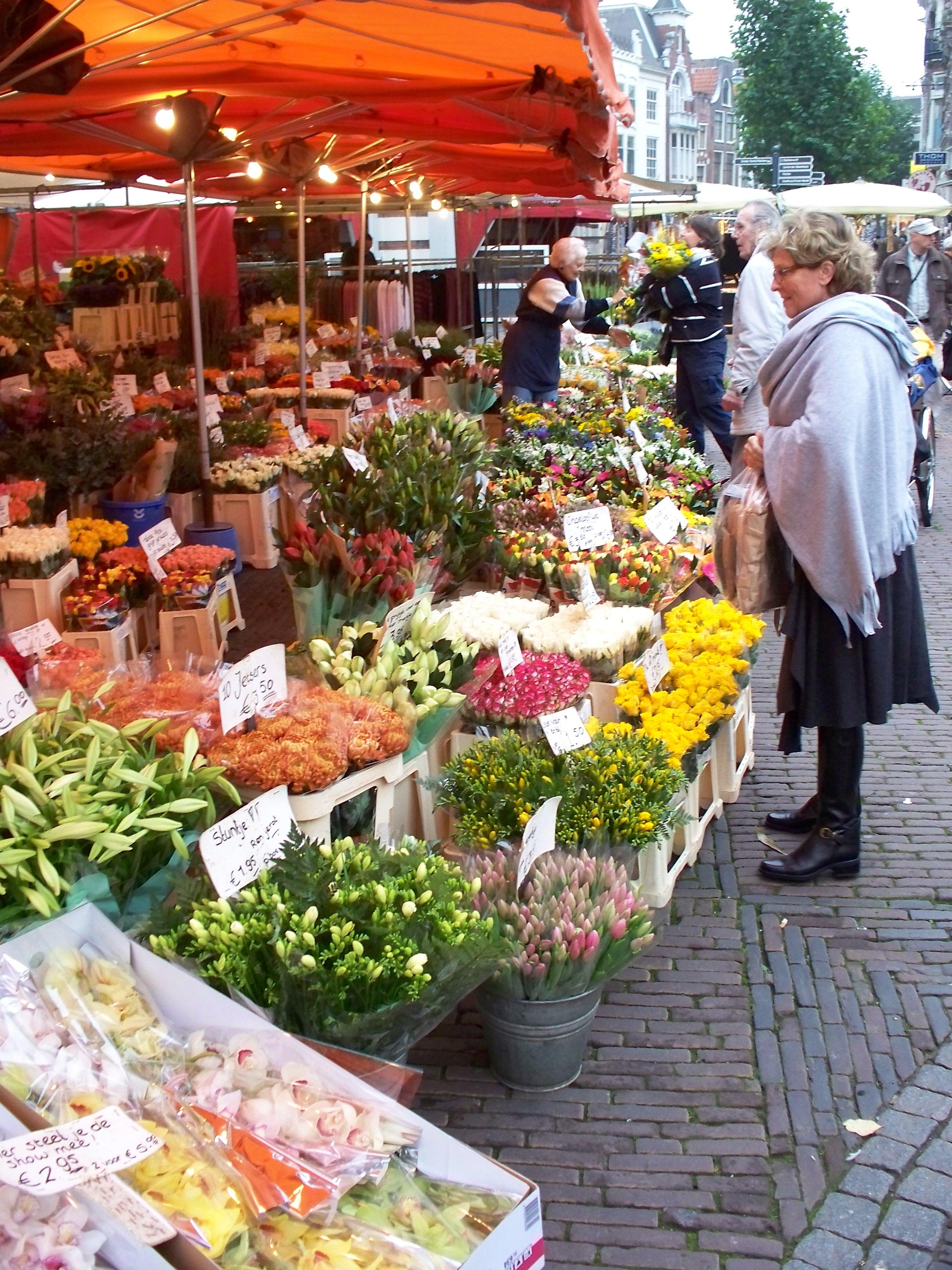 Grote Markt, Haarlem, Holland